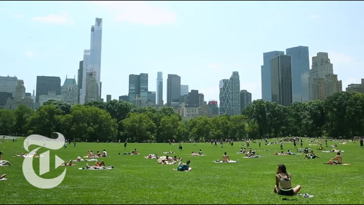 Central Park in New York is an amazing place for recreation and tourism 100