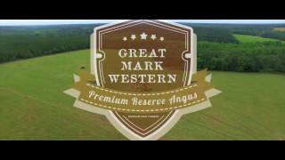 Great Mark Western | Continental