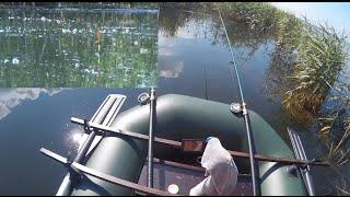 Ловля карася поплавковой удочкой с лодки в камышах 2