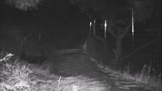 千葉県富津市の畑地に設置したワイヤーメッシュ柵です。 設置前は、イノ...