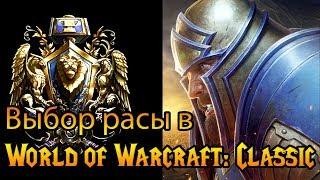 Выбор расы в World of Warcraft: Classic (#2)