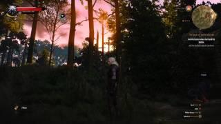 The Witcher 3: Wild Hunt - Look at them TREEEEEEES!!!!