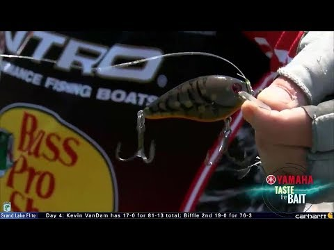 Taste the Bait: KVD's crankbait at Grand Lake