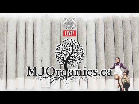 EXPERT JOINTS LIVE - Organic Tee People