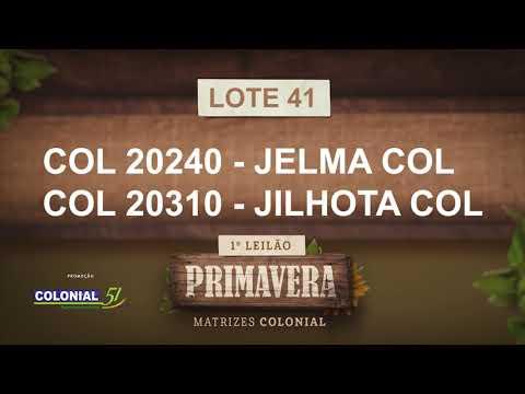 LOTE 41   COL 20240,20310