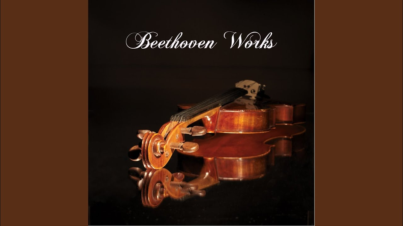 beethoven and other classical musicians A lot of the music from this period expresses heroes and struggles – including symphony no 3, the last three piano concertos, five string quartets, beethoven's only opera, fidelio, and piano sonatas including the 'moonlight', 'waldstein' and 'appassionata.