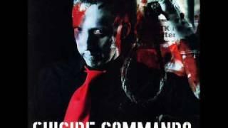 Suicide Commando - Godsend