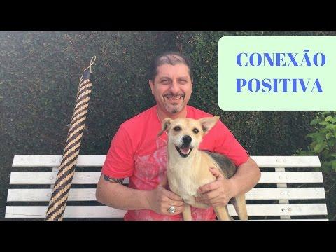 Conexão Positiva - Um instante para você  Xamanismo em Você 34