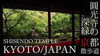 京都観光 一乗寺 圓光寺(Enko-ji temple in Kyoto,Japan) / 京都散歩道