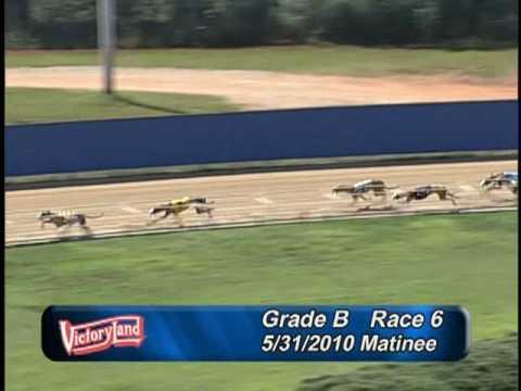 Victoryland 5/31/10 Matinee Race 6