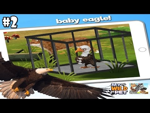 My Wild Pet - Online Animal Rescue -Flying Baby Eagle- Android / iOS - Gameplay Part 2