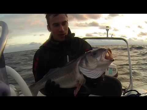 Spearfishing UK 2017