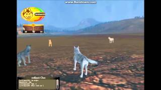 WolfQuest ~Multiplayer~ Fun pack :)