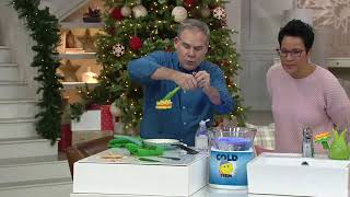 Scrub Daisy Dish Cleaning Soap Wand with Vase & Variety Scrubber Heads on QVC