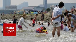 Japan heatwave declared natural disaster  - BBC News