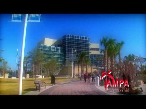 Tampa Attractions :60