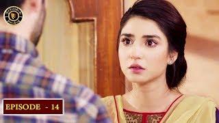 Kaisa Hai Naseeban Episode 14 - Top Pakistani Drama