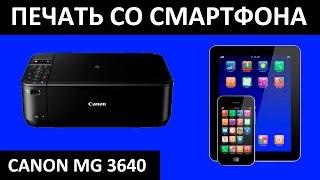 КАНОН ДРУКУ СТРУМЕНЕВИХ / ПРИНТЕР SELPHY МГ 3640