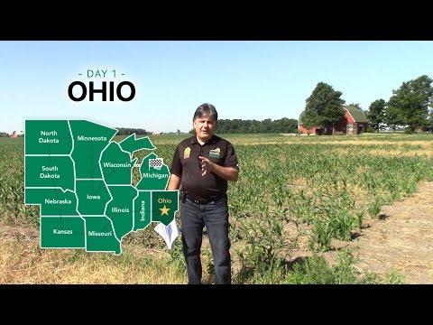 2016 U.S. Corn Belt Crop Tour - Ohio State Video