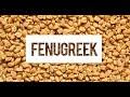 Fenugreek and Testosterone: Galactagogues Increase Prolactin Levels