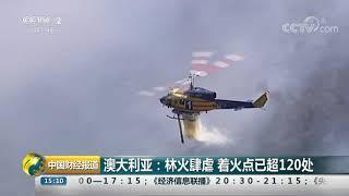 [中国财经报道]澳大利亚:林火肆虐 着火点已超120处| CCTV财经