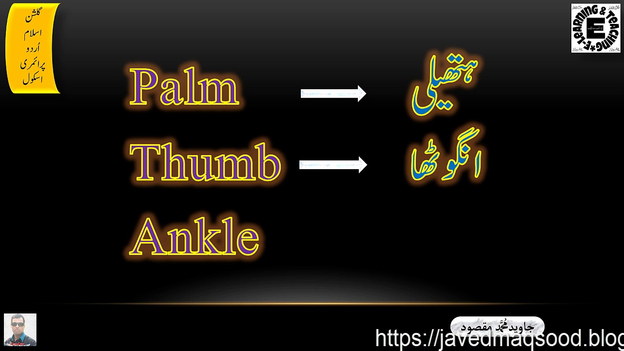 Parts Of Body In ENGLISH & URDU