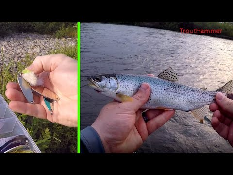 Trout Fishing The South Santiam River