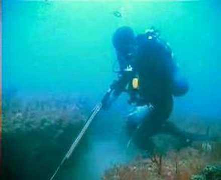 Underwater Ledge Off Myrtle Beach Coast
