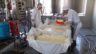 В горах Армении делают сыр с русским названием