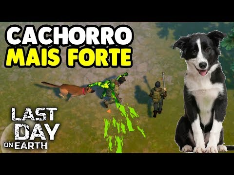 Strongest Dog? See How  Last Day On Earth