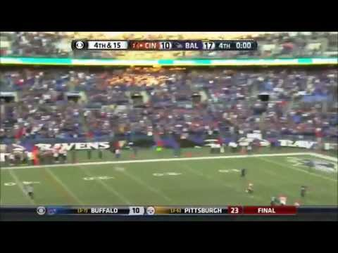 2013-14 NFL Season Highlights