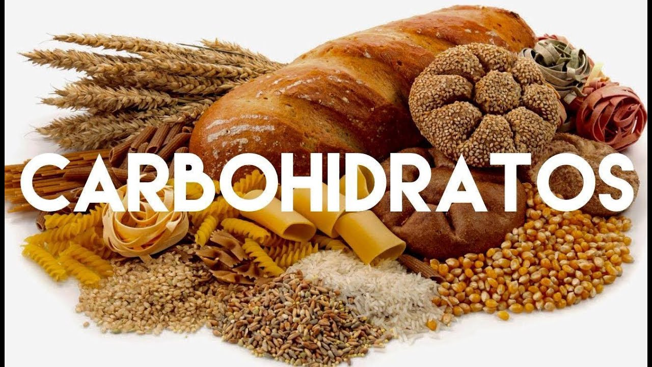 Carbohidratos youtube - Que alimentos son carbohidratos ...