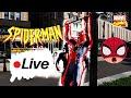 Spider-man Live In The City  Public Reactions, Parkour