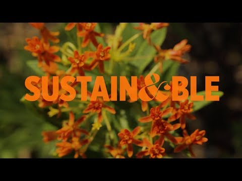 Copper & Kings American Brandy Sustainability