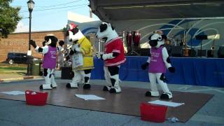 chick fil a of greer dancing cows