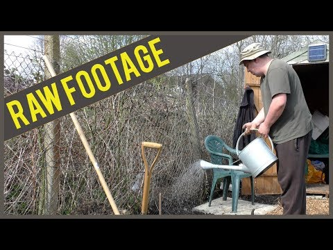 (RAW FOOTAGE) April: Allotment - Weeding Flower Bed & Tea Patio