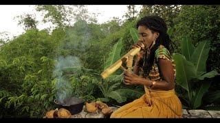 Jah9 - Avocado [Official Video 2014]