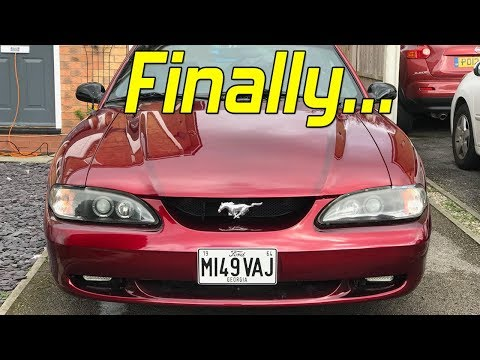 FINALLY Detailing My 1995 Ford Mustang