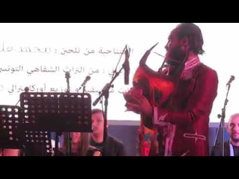 مزود تونسي