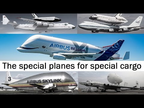 From Pregnant Guppy to Beluga XL. The special planes for special cargo