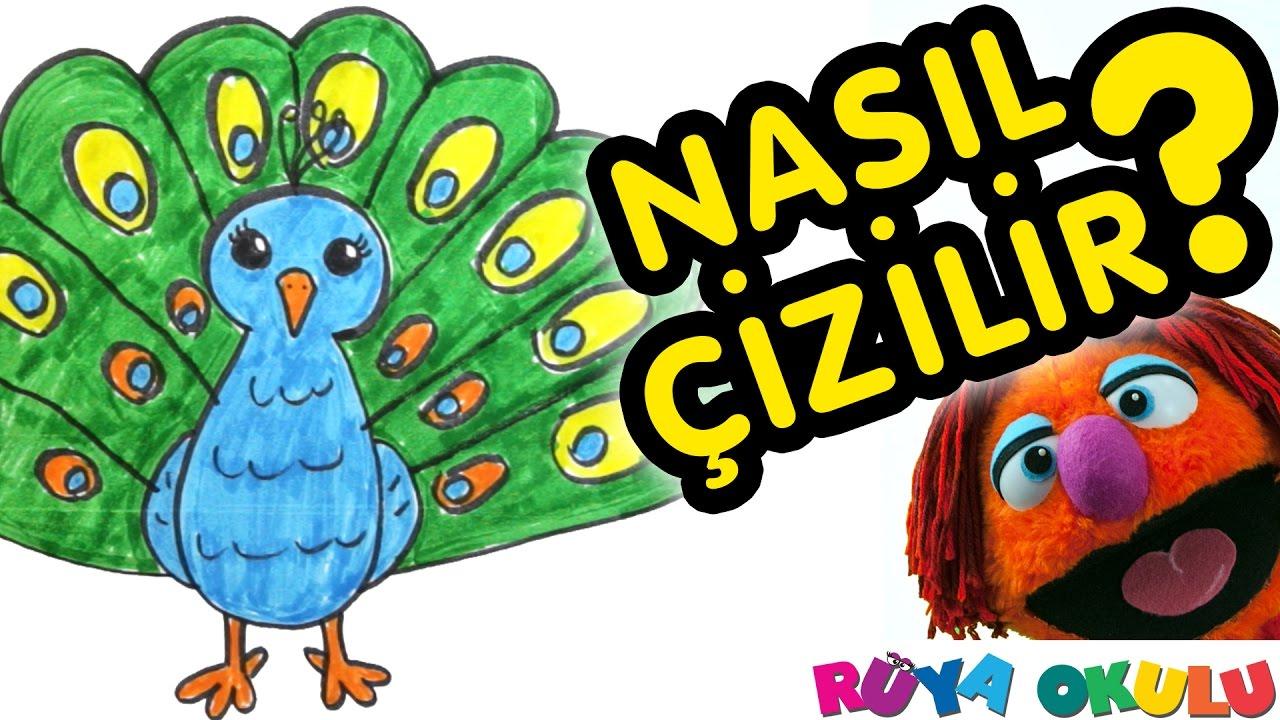 Nasıl çizilir Tavus Kuşu çocuklar Için Resim çizme Rüya Okulu