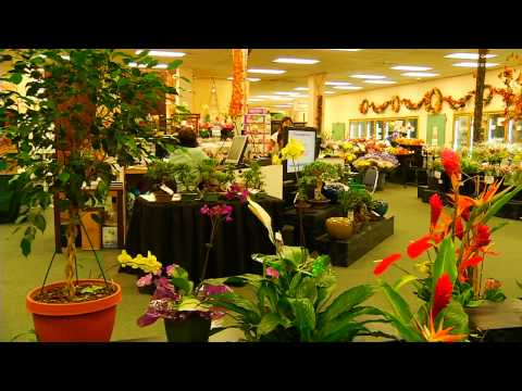 Watanabe Floral Company Overview | Watanabe Floral - Honolulu, Hawaii Florist Flower Shop