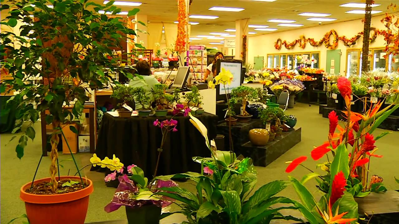 Watanabe floral company overview watanabe floral honolulu watanabe floral company overview watanabe floral honolulu hawaii florist flower shop youtube izmirmasajfo Images