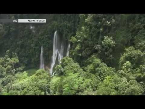 Kavakuna Cave Explored - Trailor_Papua New Guinea - NHK WORLD HD