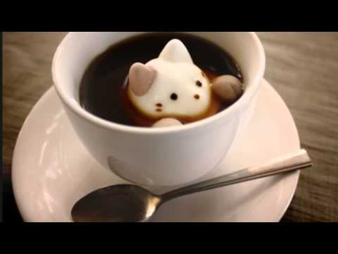 Cats In The Kettle Parody Of (cats In The Cradle
