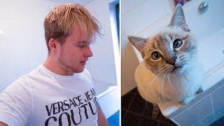 Welkom bij weer een nieuwe Royalistiq Vlog! Als mijn kat scoopie op...