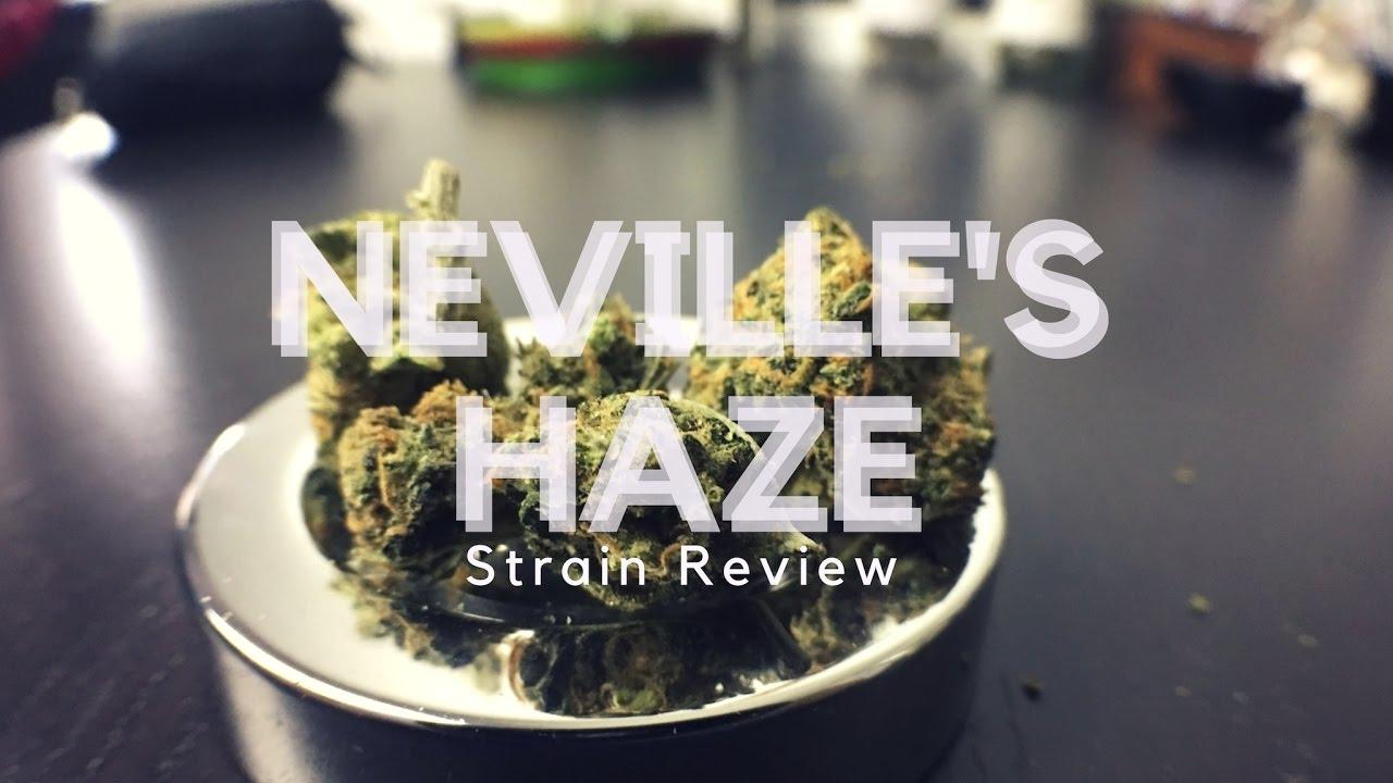 Neville's Haze Strain Review - ISMOKE - YouTube