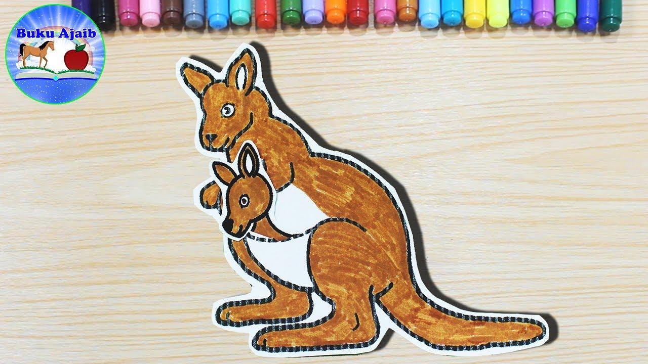 Apa Ya Keistimewaan Hewan Kanguru