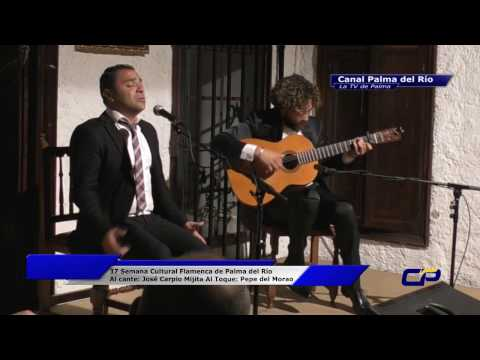 37 Semana Flamenca, Al cante: José Carpio, al toque: Pepe del Morao FACEBOOK: Canal Palma del Río