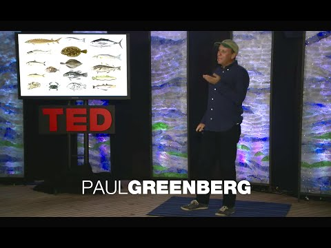 What to eat to avoid overfishing  Paul Greenberg TED Talk Summary